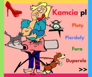 Kamcia.pl